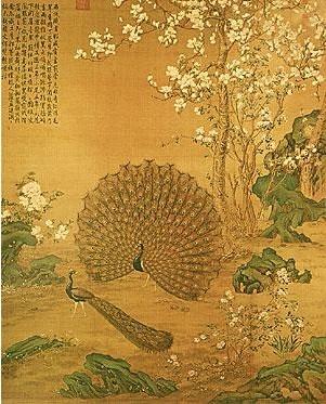 孔雀头画法步骤图片